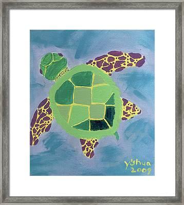 Chiaras Turtle Framed Print