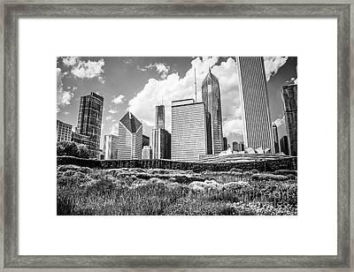 Chicago Skyline At Lurie Garden Black And White Photo Framed Print by Paul Velgos