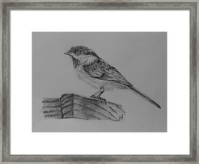 Chickadee Bird Framed Print