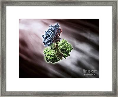 Cholera Toxin, Artwork Framed Print by Equinox Graphics