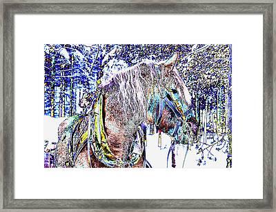 Christmas  Horse Framed Print by Tamara Sushko