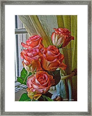 Framed Print featuring the photograph Cindy's Roses by Bonnie Willis