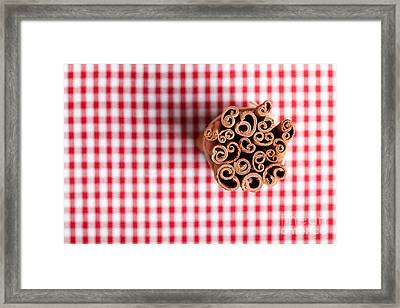 Cinnamon Framed Print by Nailia Schwarz