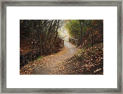 City Creek Bridge Framed Print