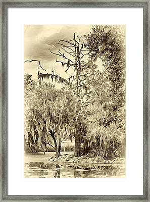 City Park Lagoon - Sepia Framed Print by Steve Harrington