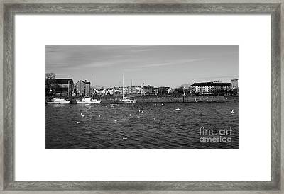 Claddagh  Framed Print
