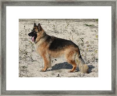 Classic Framed Print by Pat Purdy