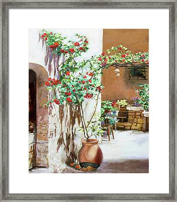 Climbing Roses Framed Print by Dominique Amendola