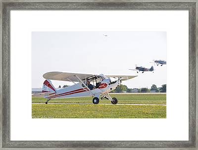 Cub And More Framed Print