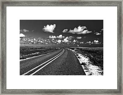 Cocodrie Highway Framed Print by Scott Pellegrin