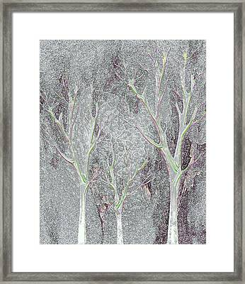 Cold Day In The Park Framed Print by Mimo Krouzian