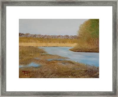 Colfax Wildlife Area Framed Print
