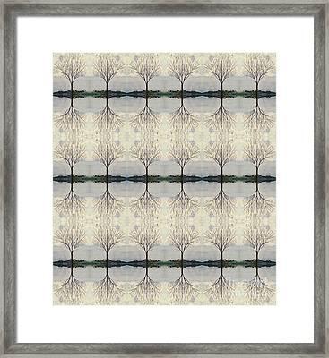 Colorado Cottonwood Tree Mirror Image  Framed Print
