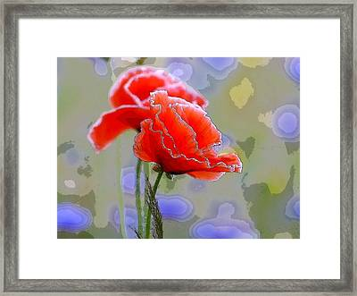 Colors Of Spring - Poppies 11 Framed Print by Celestial Images