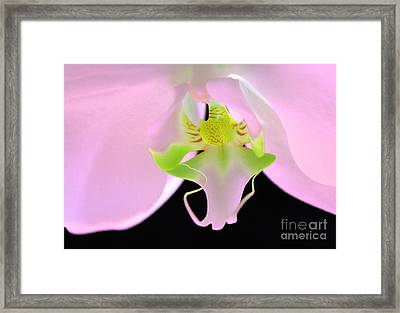Come To Me Framed Print