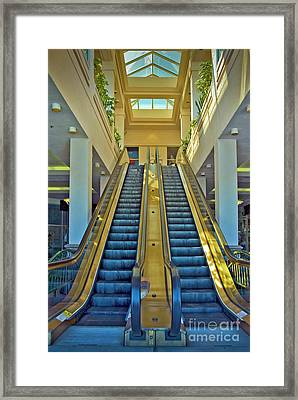 Coming And Going Framed Print by David Zanzinger