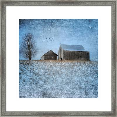 Coming Home To Roost Framed Print by Bill Wakeley