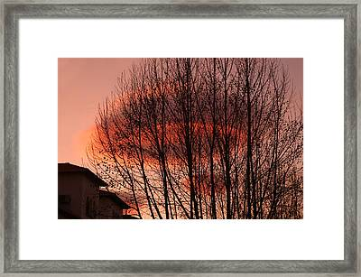 Coming In To Land Framed Print by Jez C Self