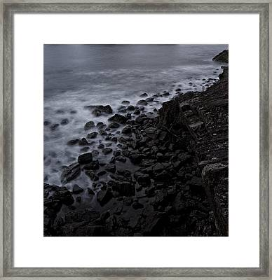 Contrasts Framed Print by Sarita Rampersad