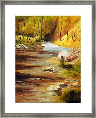 Cool Mountain Stream Framed Print by Phil Burton