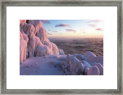 Coolness Framed Print by Mary Amerman