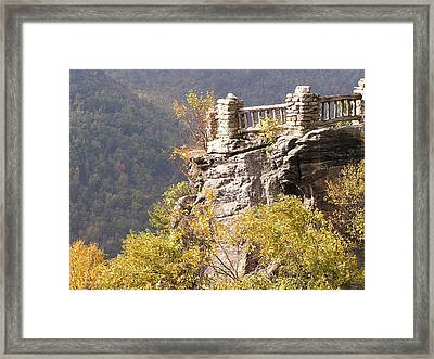 Cooper's Rock Overlook Framed Print