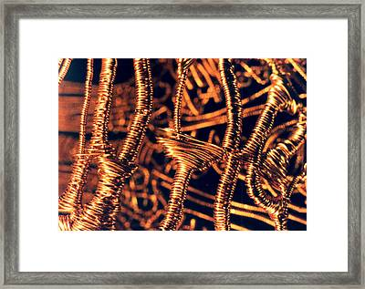 Copper Wirework Framed Print