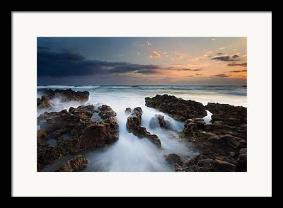 Coral Cove Framed Prints