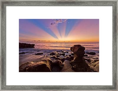 Coral Cove Framed Print by Debra and Dave Vanderlaan