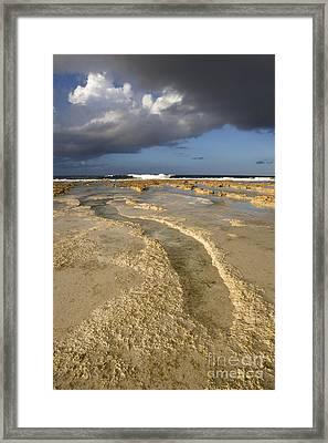 Coral Reef, Polynesia Framed Print
