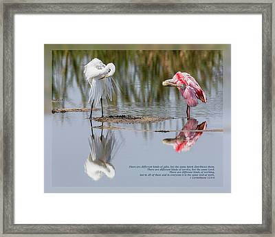 Framed Print featuring the photograph 1 Corinthians 12 4-6  by Dawn Currie