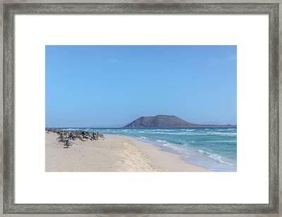 Corralejo - Fuerteventura Framed Print by Joana Kruse