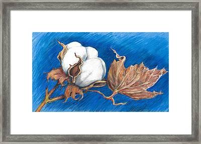 Cotton Picking Blues Framed Print