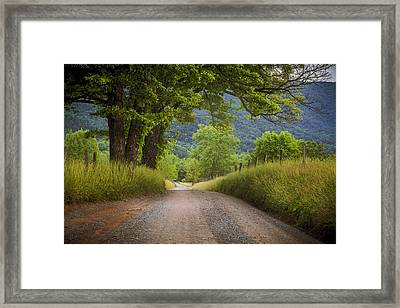Country Lane In The Smokies Framed Print by Andrew Soundarajan