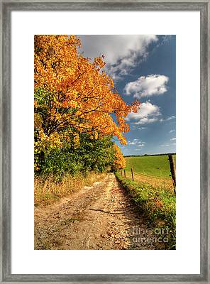Country Road And Autumn Landscape Framed Print by Michal Boubin