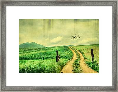 Country Roads Framed Print by Darren Fisher