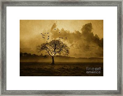 Country Sunrise Framed Print