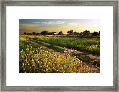 Countryside Landscape Framed Print by Carlos Caetano