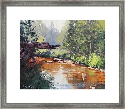 Coxs River Bank Framed Print by Graham Gercken