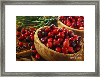 Cranberries In Bowls Framed Print by Elena Elisseeva