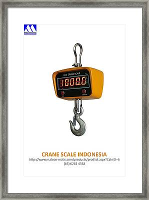 Crane Scale Indonesia Framed Print by Matcon Matic