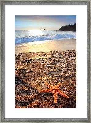 Crescent Bay Laguna Beach California Framed Print by Utah Images