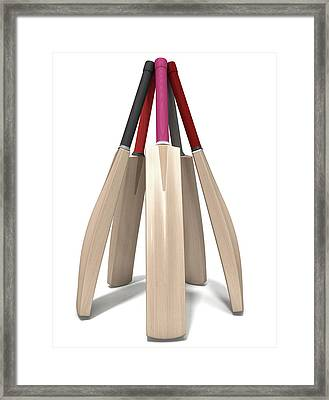 Cricket Bat Circle Framed Print