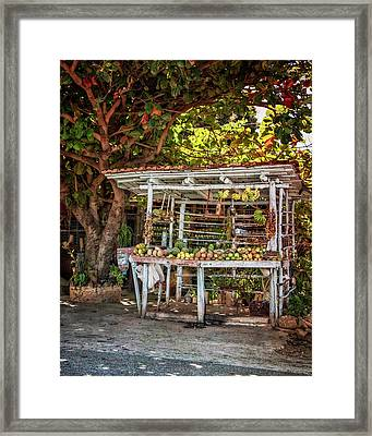 Framed Print featuring the photograph Cuban Fruit Stand by Joan Carroll
