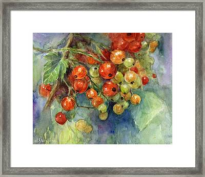 Currants Berries Painting Framed Print by Svetlana Novikova