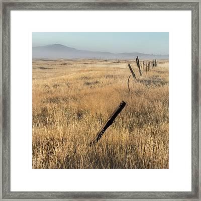 Cuyamaca Fenceline Framed Print