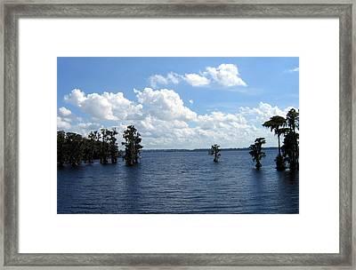 Cypress Cove Framed Print by Frederic Kohli