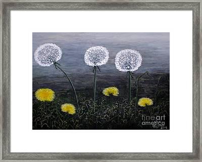 Dandelion Family Framed Print by Judy Kirouac
