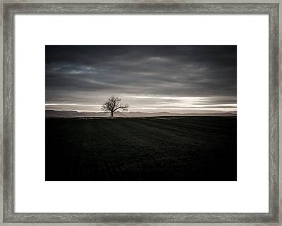 Dark And Light Framed Print by Miguel Winterpacht