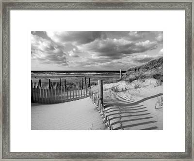 Daydream Framed Print by Dianne Cowen